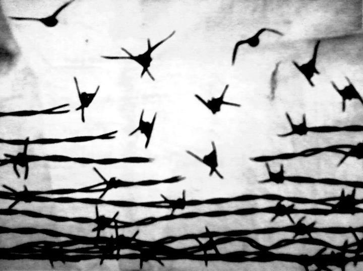 latajacy drut kolczasty