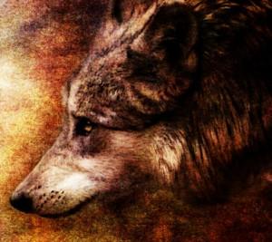 Wolf_by_crimsonvermillion