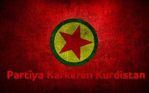 pkk_partiya_karkeren_kurdistan_by_ariarzen-d6rfio9